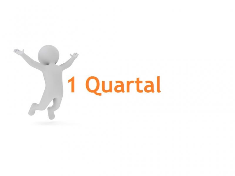 Mitgliedschaft Q1 | 1 Quartal | 1 Person